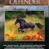 California Defender Magazine - 2013 Summer Edition Electronic Version (PDF)
